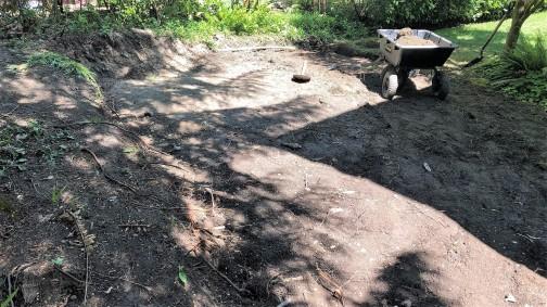 Some dug
